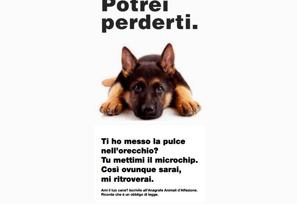 La campagna (elettorale) sugli animali del Ministero della Salute