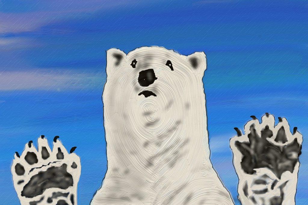 Gli orsi polari non hanno futuro