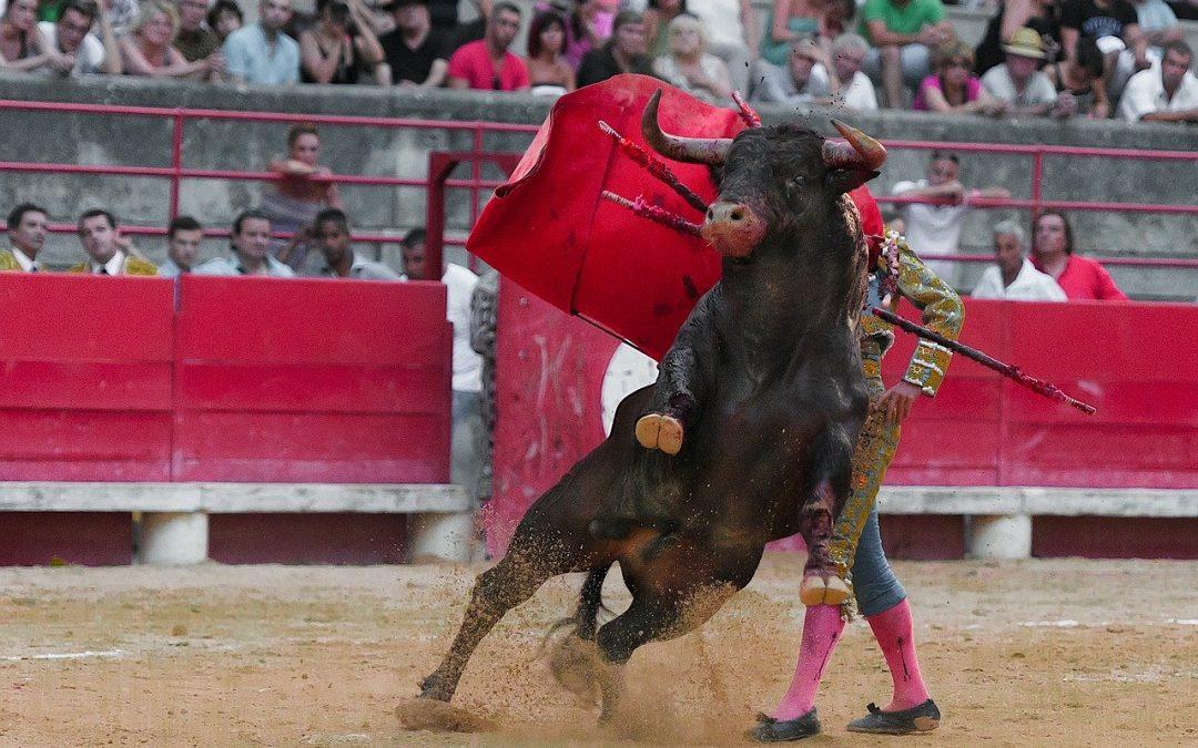 Ultradestra difende corrida in Spagna