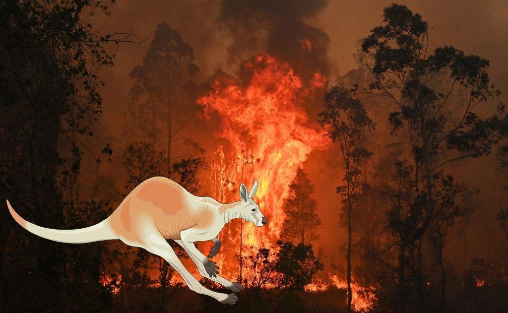 Australia del negazionismo climatico