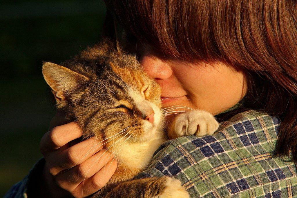 umani e difendo gli animali