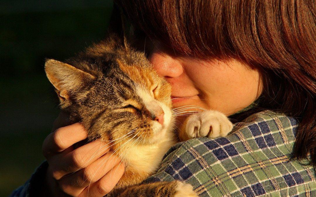 Mi piacciono gli umani e difendo gli animali non umani