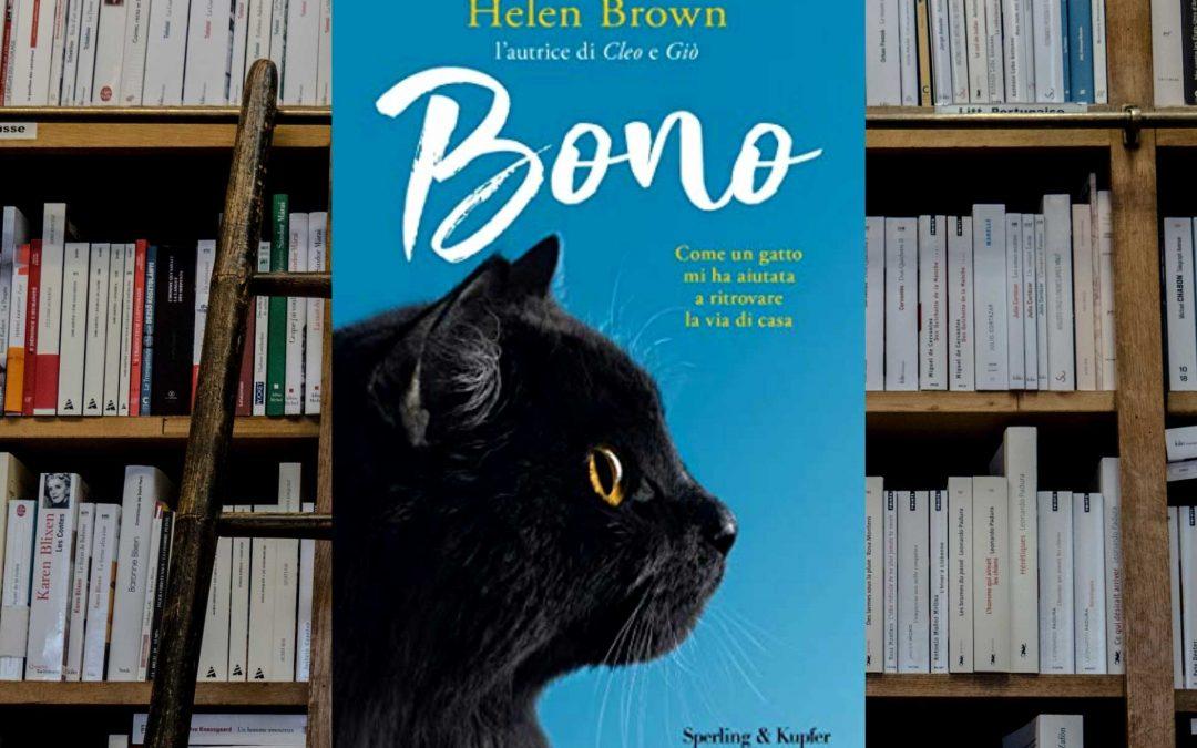 Bono è un gatto molto particolare, che ha aiutato l'autrice a ritrovare la strada di casa