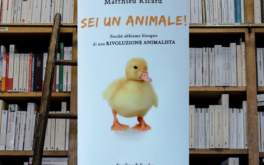 Sei un animale – Perché abbiamo bisogno di una rivoluzione animalista