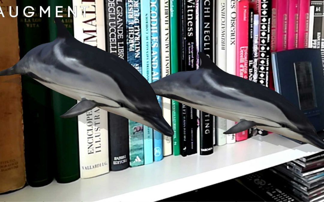 Metti una stenella in salotto, giocando con Digital Whales e la realtà aumentata