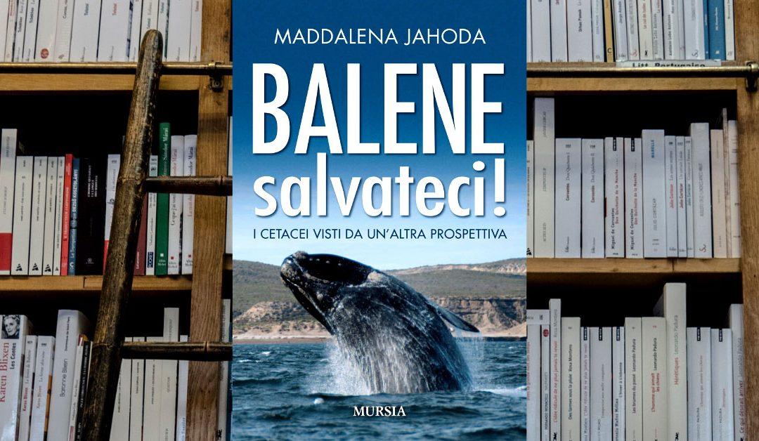 Balene salvateci ovvero come guardare questi cetacei con occhio diverso, comprendendo la loro l'importanza