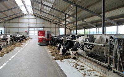 Allevamenti intensivi e benessere animale sono due realtà incompatibili fra loro