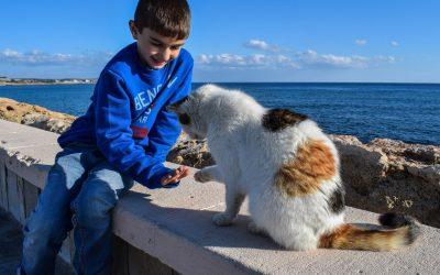 I crimini contro gli animali si combattono insegnando il rispetto per le vite degli altri