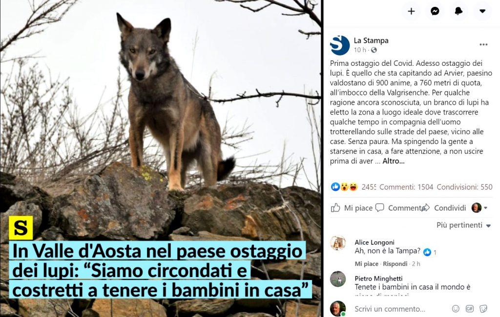 Assediati dai lupi bambini in pericolo